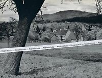 Hertingen im Markgräflerland - Bad Bellingen      um 1955   K 11-2