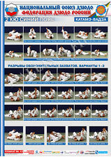 Posters JUDO. Blue   belt  1 poster.The technique of judo.KATAME WAZA 2.