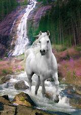 RIESEN Poster PFERDE - White Horse Waterfall By Bob Langrish ca100x140 NEU FL549
