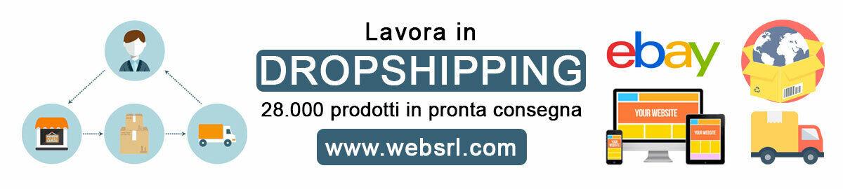 websrl.com