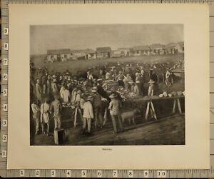 1899 BOER WAR ERA SOUTH AFRICA PRINT MAFEKING