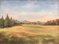 Valdemar Hartnack 1895 - Wide Summer Landscape