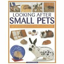 Looking After Small Pets: An authoritative family guide to caring for-ExLibrary