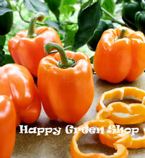 VEGETABLE - SWEET PEPPER - 50 SEEDS - ORANGE GOLD BELL