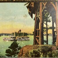 Antique Postcard NY Thousand Islands Steamboat Picking Cotton RPPC Photo 1908
