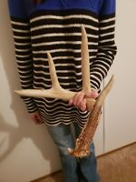 Wild Whitetail Deer Antler Shed Horn Rack Decor Craft 4 Point Typical