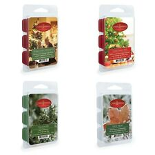 Candle Warmers Scented Christmas Wax Melts  2.5 Oz Pack With 6 Cubes Your Choice
