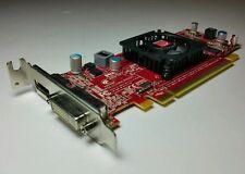 NEW Ref - ATI Radeon HD4450 512MB PCI-E 1x DVI 1x DisplayPort Video Card C7