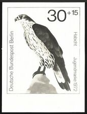 Berlín foto-essay 442/445 aves de presa 1973 devorarán Bird of Prey Goshawk proof!