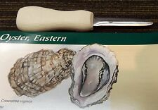 """SANI-SHARP 3"""" OYSTER KNIFE WITH POLYPROPYLENE HANDLE STAINLESS STEEL BLADE"""