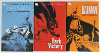 Lot of 3 Loeb/Sale The Long Halloween Dark Victory Haunted Knight TPB Softcovers