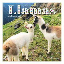 2021 Llamas Mini Calendar