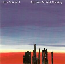 EDIE BRICKELL : PICTURE PERFECT MORNING / CD