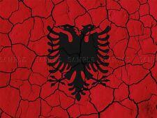 PITTURA astratta FLAG con effetto craquelè concrete Albania Black Eagle Crest stampa bmp10300