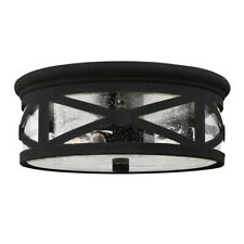 Sea Gull Lighting Lakeview Two Light Outdoor Ceiling Flush Mount, Black with Cle
