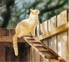 """The Amazing Cat Ramp"" FR ARTIST'S PROOF WHITE CAT ART CatmanDrew Drew Strouble"