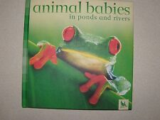 Animal Babies: Animal Babies in Ponds and Rivers by Jennifer Schofield and...