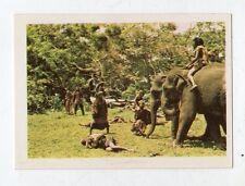 figurina - SANDOKAN ALLA RISCOSSA BOY 1976 - numero 54