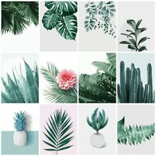 DIY Paint By Numbers Set - Hand Painted Modern Colours - Succulents