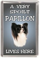 "Papillon Dog Fridge Magnet  ""A VERY SPOILT PAPILLON LIVES HERE"" by Starprint"