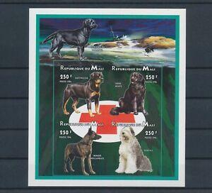 LO10251 Mali pets animals dogs imperf sheet MNH