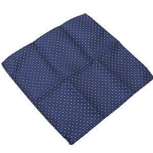 Men's Party Silk Suit Pocket Square Handkerchief Kerchief Towel Hanky R
