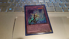 Yugioh Goddess Bow DRL2-EN011 Signed By Amanda Miller Voice of Sailor Jupiter x1