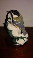 Mésange noir - Coal tit - Oiseaux de collection