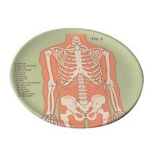 Anatomique Squelette serving tray