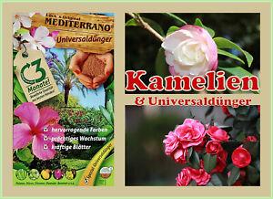 Kameliendünger  für Garten & Balkon von Mediterrano 10 KG