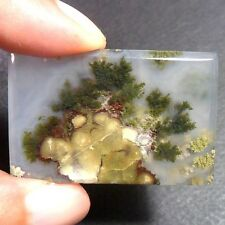 72ct AAA NATURAL Green Brown RED GARDEN MOSS AGATE ~3-dimensional PICTURE~