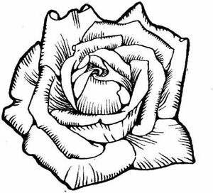 Flower - Flowers - Rose#18 Unmounted Clear Stamp Approx 60x55mm