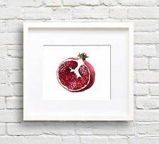 Pomegranate Art Print Watercolor Painting by Artist DJR