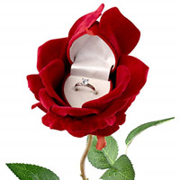 Noble Rose Heart Flower Blossom Ring Box for Jewelry Box Red