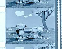 "Advertising 16mm Film Reel - Mayflower Farms Dairy #6/7 ""CONTEST"" 20 sec (M06)"