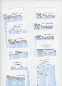 Strat-O-Matic Football original 2011 Oakland Raiders 18 cards NrMINT