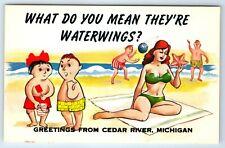 Vintage Comic Postcard Greetings From Cedar River Michigan MI Waterwings Humor