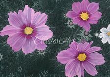 Watercolour Floral Painting Giclee Print Wall Art Medium Flowers Garden pink
