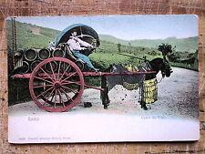 Wine Cart Carro da Vino Roma 1905s