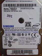 250gb Samsung hm251ji | p/n 292511cpa11863 | 2008.03 #391