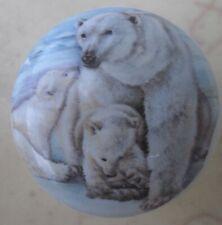 Bear Cabinet Knobs Knob w/ Polar Bear and Family #2 Wildlife