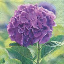 2 Serviettes en papier Hortensia Violet Fleur Paper Napkins Purple Hydrangea