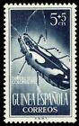 SPANISH GUINEA -1953- Longhorn Beetle - Stamp Day 1953 - Semi-Postal Stamp  #B27