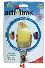 JW Pet Clear Ring Bird Swing Toy Random Colors