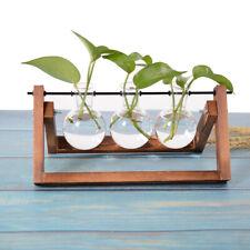 Desktop Plant Terrarium Hydroponic Glass Planter Bulb Shape Vase W/ Wooden Stand