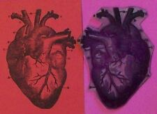 Anatomical Heart rubber stamp by Amazing Arts