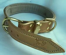 Large Gold Leather Dog Collar & Suede Padded Inner Lining with Brass Fittings