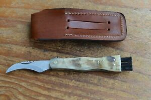 custom made Mushroom Stainless Steel knife From the Eagle Collection MU6687K