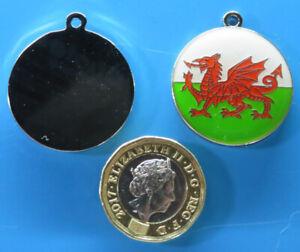 Expressions Engravers 28mm round Enamelled Welsh Flag  pet/dog tag