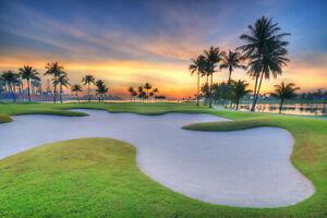 Fototapete Golfplatz Golf Palmen - Kleistertapete oder Selbstklebende Tapete